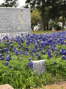 monument and bluebonnets