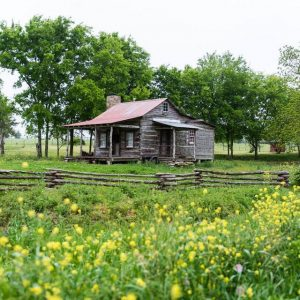 Log Cabin on a back county road