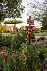 Antique Rose Emporium gardens